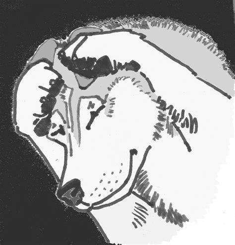 Etología Familiar: Fobia a los ruidos fuertes