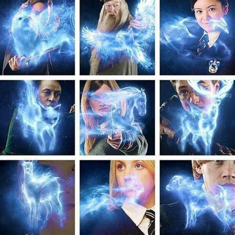 Expecto Patronum! What is your Patronus? | Harry Potter Amino