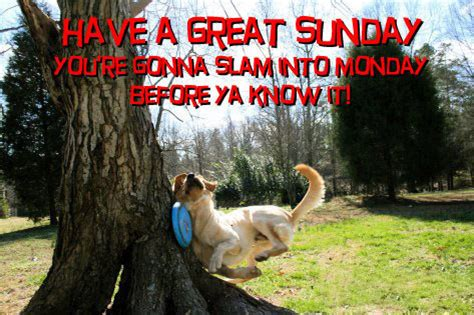 Facebook Sunday ……………….. | Freedom Is Just Another Word…