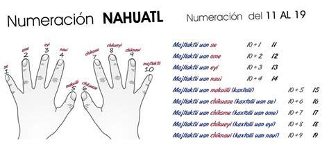 ¡Fácil y divertido! Aprende náhuatl básico • NeoMexicanismos