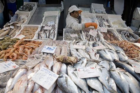 FAO - News Article: Fish farms to produce nearly two ...