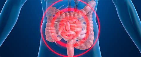 Farmacias.com   intestino Archivos   Farmacias.com