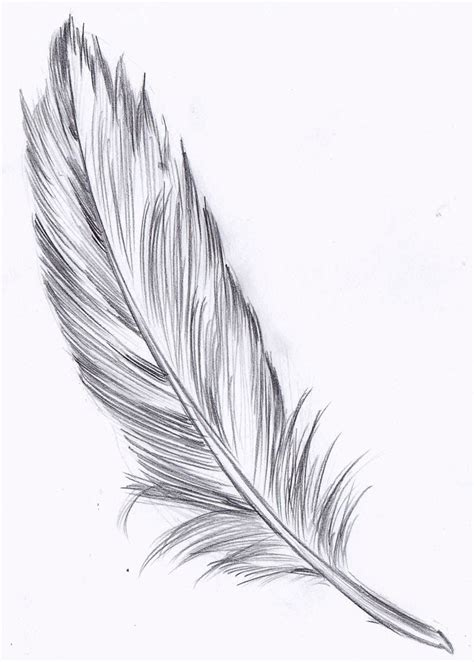 feather drawing - Hľadať Googlom | Tattoos | Pinterest ...