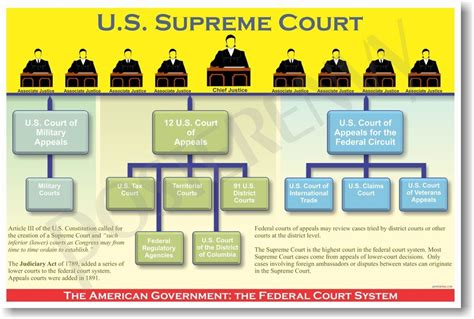 Federal Court System - US Government Civics POSTER | eBay