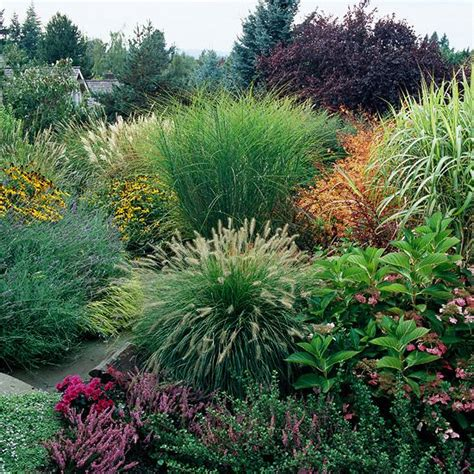 Feel free: Landscaping with ornamental grasses