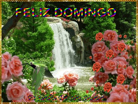 FELIZ DOMINGO - Amigos de Gabito - Gabitos