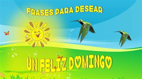 FELIZ DOMINGO, FRASES PARA DESEAR UN FELIZ DOMINGO - YouTube