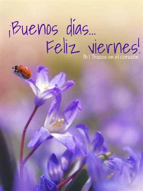 feliz Viernes Buenos Dias