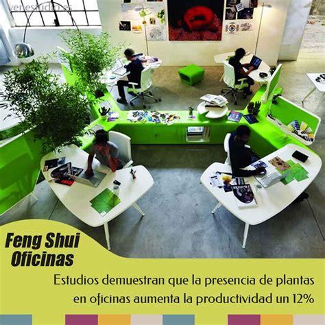 Feng Shui plantas en el trabajo | YEN Estudio