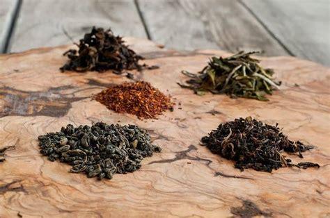 Fermentación: consejos para saber cómo elegir el té para ...