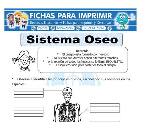 Ficha de Sistema Óseo para Primaria - Fichas para Imprimir