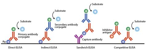 Figure 35.1: Different types of ELISA.