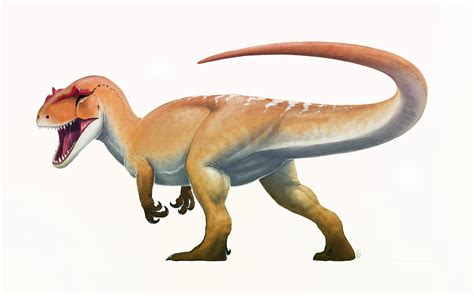 File:Allosaurus Life Restoration.jpg - Wikipedia