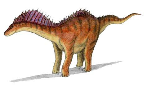 File:Amargasaurus.jpg - Wikimedia Commons