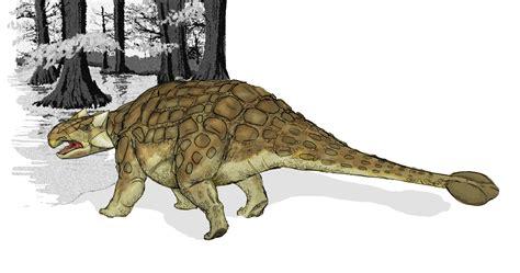 File:Ankylosaurus dinosaur.png - Wikipedia