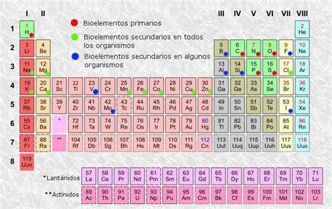 File:Bioelementos.jpg - Wikimedia Commons