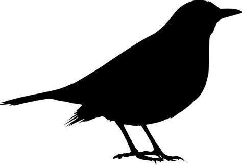 File:Blackbird Turdus merula female silhouette.svg ...