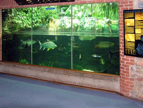 File:Bristol.zoo.aquarium.arp.jpg   Wikimedia Commons