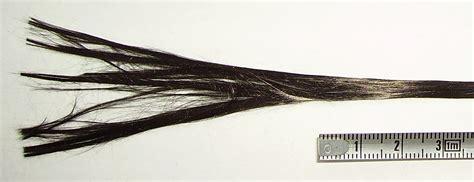 File:Carbon fiber-2.jpg - Wikimedia Commons