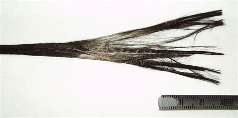 File:Carbon fiber.jpg - Wikimedia Commons