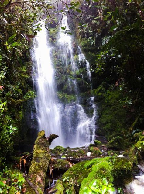 File:Cascada en paramos de colombia.jpg - Wikimedia Commons