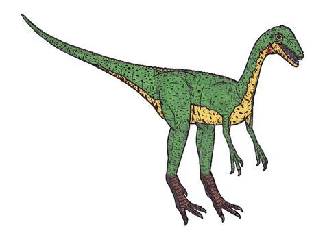 File:Compsognathus 95898.jpg - Wikimedia Commons