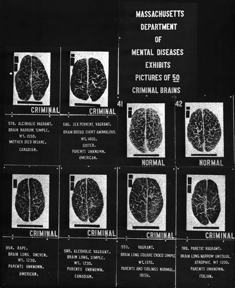 File:Criminal brains.jpg   Wikimedia Commons