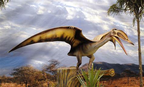 File:Dinosaurios Park, Pterosauria2.JPG