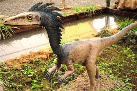 File:Dinosaurios Park, Troodon.JPG - Wikimedia Commons