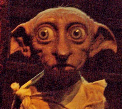 File:Dobby  Harry Potter  face.jpg   Wikimedia Commons