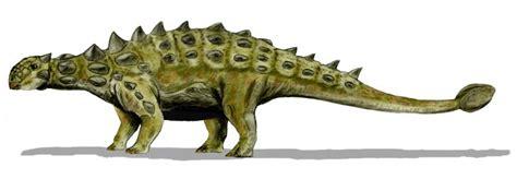 File:Euoplocephalus BW.jpg   Wikipedia