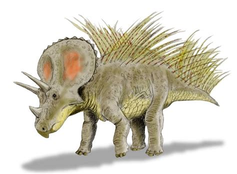 File:Triceratops new BW.jpg - Wikimedia Commons