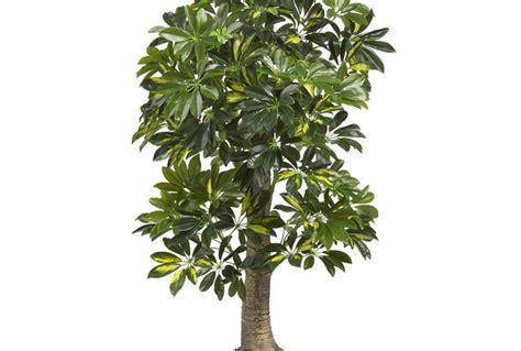 find cheap artificial plants   fiverr