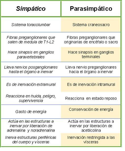 Fisiología Básica Olivares Zura Diana Carolina III-10: El ...
