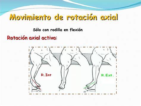 Fisiologia Rodilla
