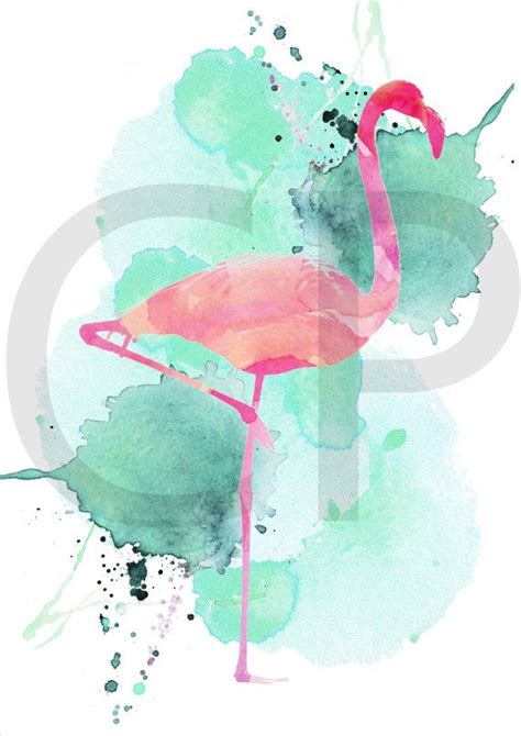 Flamenco flamenco para imprimir ilustración de por ...