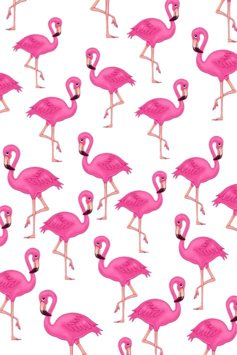 Flamingo background discovered by N a t h a l i e