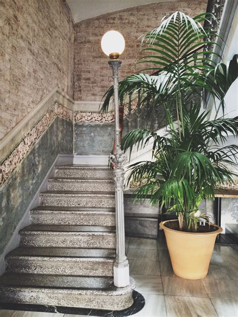 Flax and Kale in Barcelona - SILVER STORIES