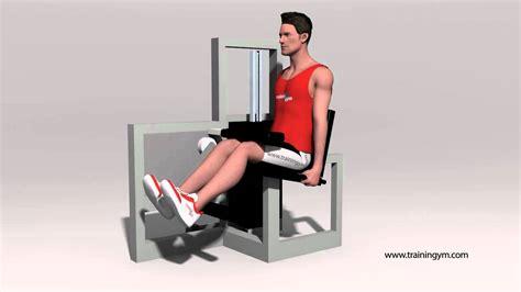 Flexión de rodilla sentado en máquina - YouTube