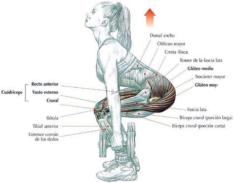 Flexion de Rodillas con Mancuernas