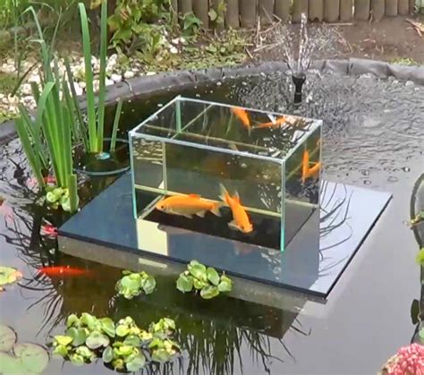Floating Fish Koi Pond Observatory Lets You View Your Fish ...