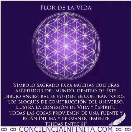Flor de la vida | Frases para el alma y el corazón ...