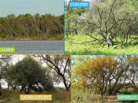 Flora y fauna de Entre Ríos