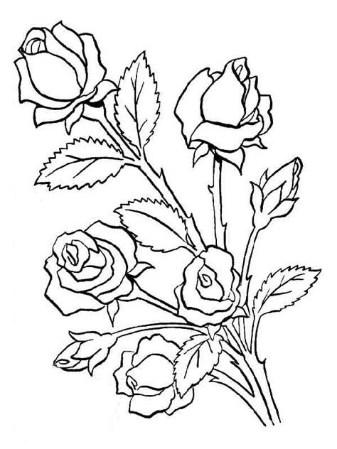 Flores para colorear   Dibujos infantiles, imagenes cristianas