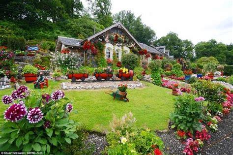 Flores para Jardim: Modelos de Flores e Jardins para ...