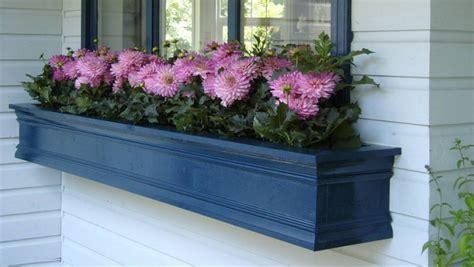Flores para jardineras   pisos Al día   pisos.com