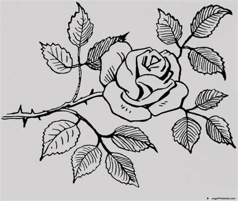 Flores Para Pintar Imprimir Y Regalar Dibujo De Osito ...