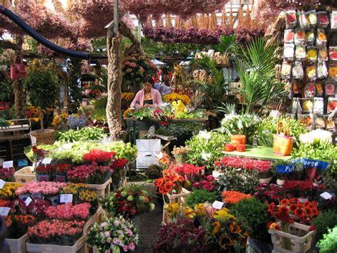 Flores y Palabras: Holanda, flores y agua