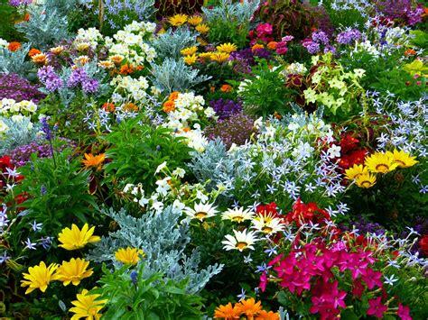 Flower Garden Flowers · Free photo on Pixabay