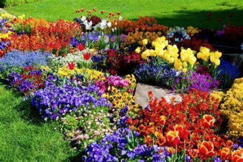 Flower Garden on Pinterest  2  – New HD Wallpapers ...